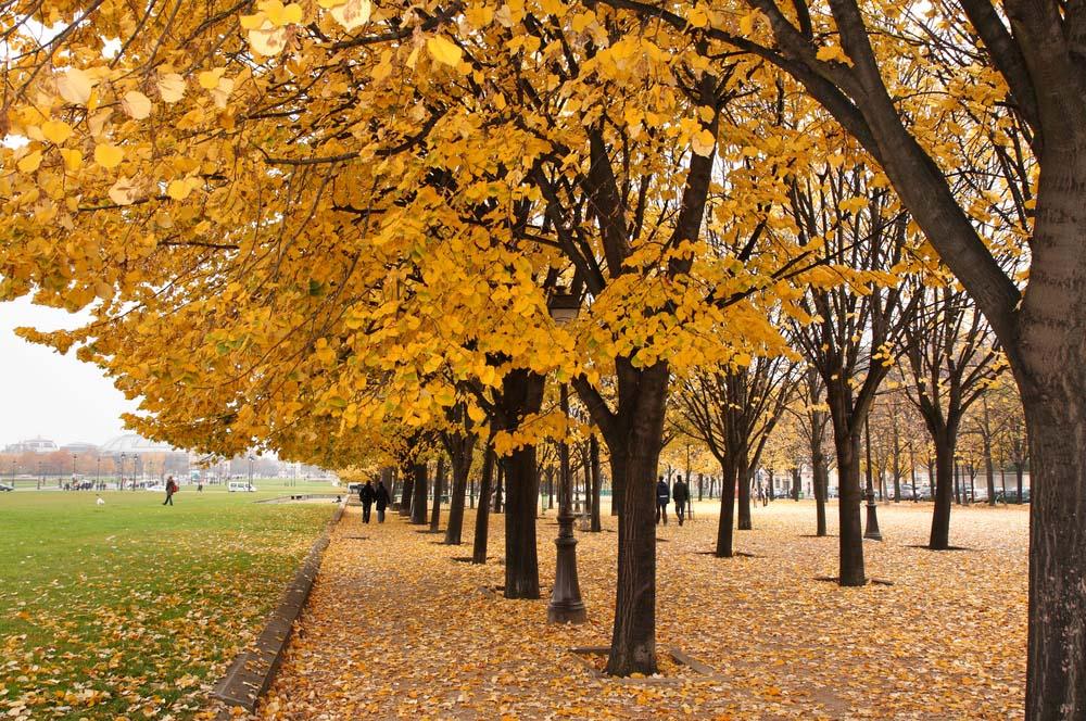 essay on autumn season for class 3